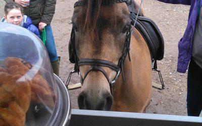 Parwood Equestrian Centre, Guildford – 15/04/2017