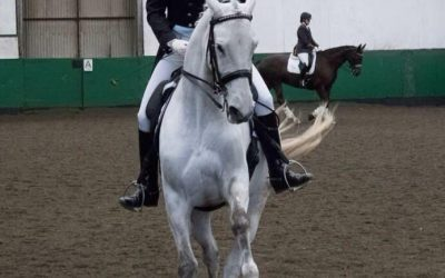 Colegate Dressage, Priory Equestrian, Frensham – 09/03/18
