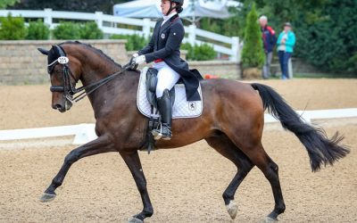 Hampshire Rural Riding Club (Dressage) – 30/03/19